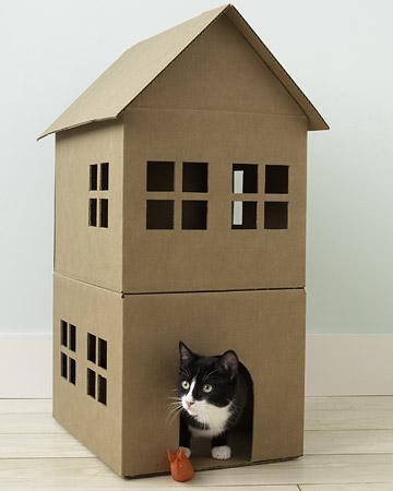 Pc_wgd104781_cathouse3a_xl